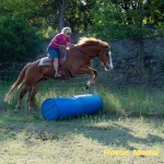amanda n wrangler at horse moms photo of the week