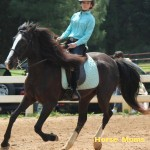 renita jones at horse moms photo of the week