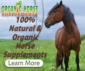 secret formula to supplement your horse