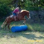 amanda n wrangler at horse moms photo of the week