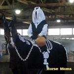 caro clark Ranger Gord at horse moms photo of the week