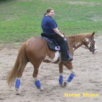 erin fowler at horse moms photo of the week
