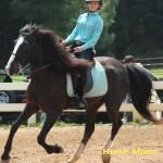 renita jones at horse moms photo of the week