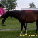 horse mom sherry burner diamond