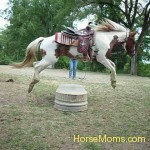 Tamara Svencer This is me working with our horse Rain on jumping! My feet make her look like a carousel horse:)