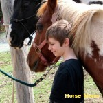 Tamara Svencer My son Jacob hanging out with his horsie buddies Magpie &Rain before a ride