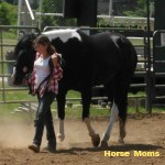 My daughter Laurel A. Longworth showing her horse Magpie