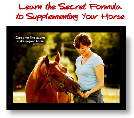 secret formula to supplementing your horse